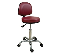 Professional Stool with backrest by Oakworks